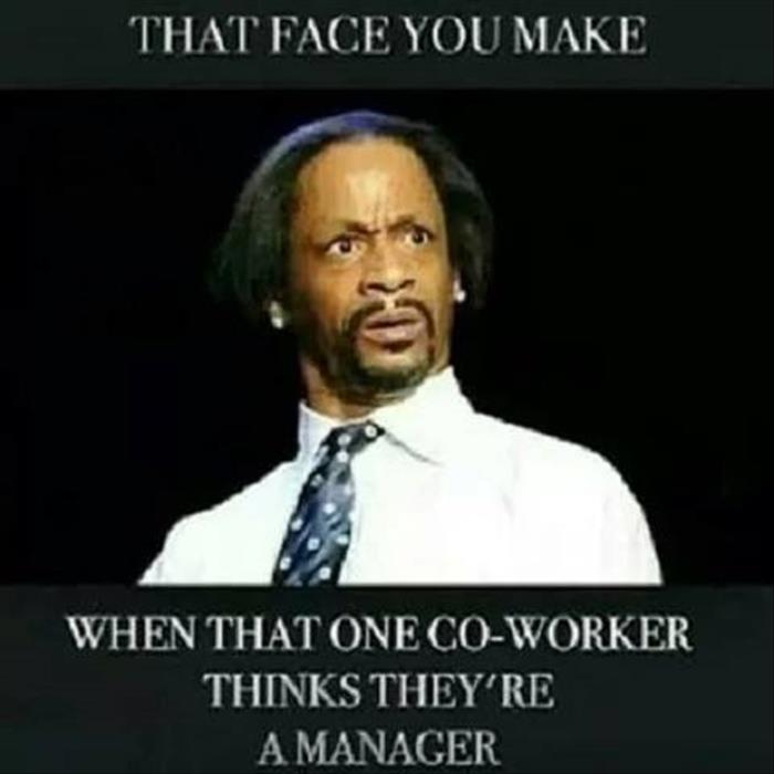 funny quotes about stupid co workers just bcause