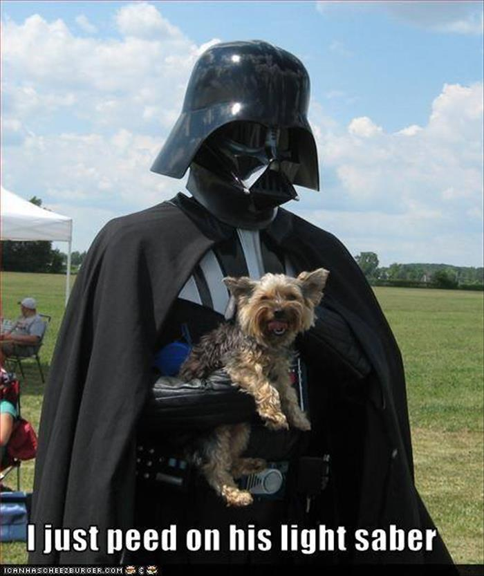 the dog peed on vader