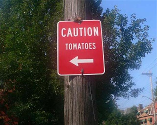 wtf signs (3)