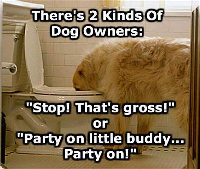 two types of dog owners