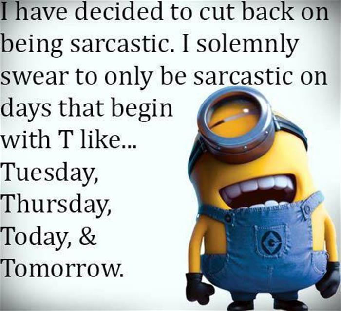 Quotes About Being Sarcastic: Funny Pictures Of The Day