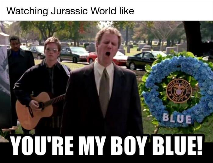 you're my boy blue
