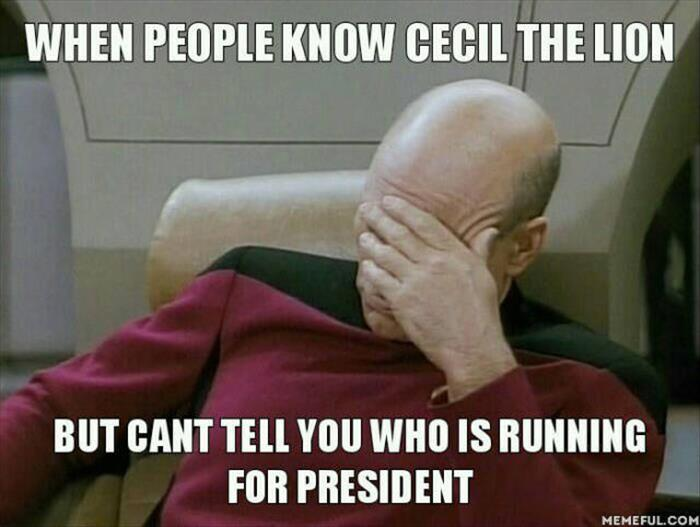 funny cecil the lion