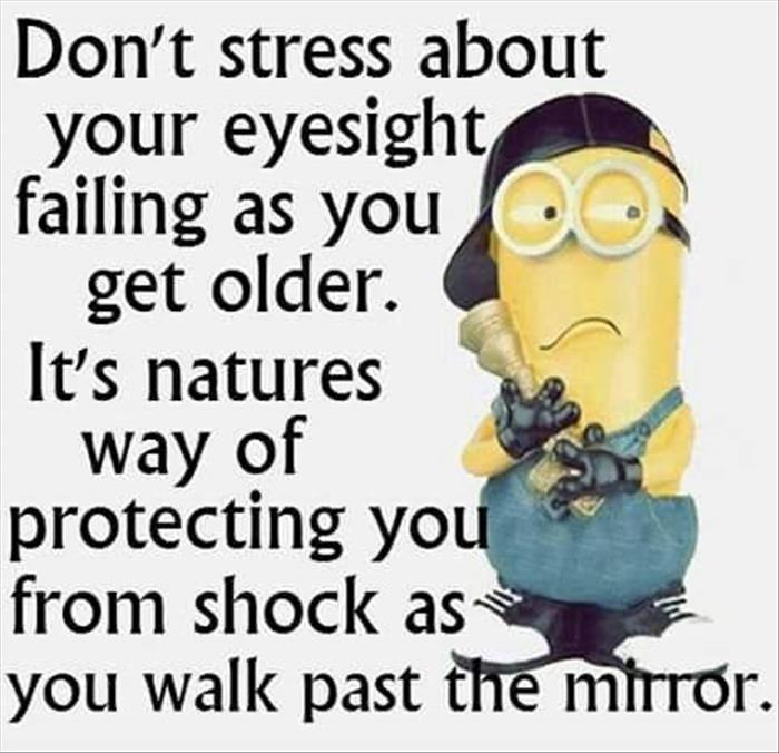 Image result for minion funnies