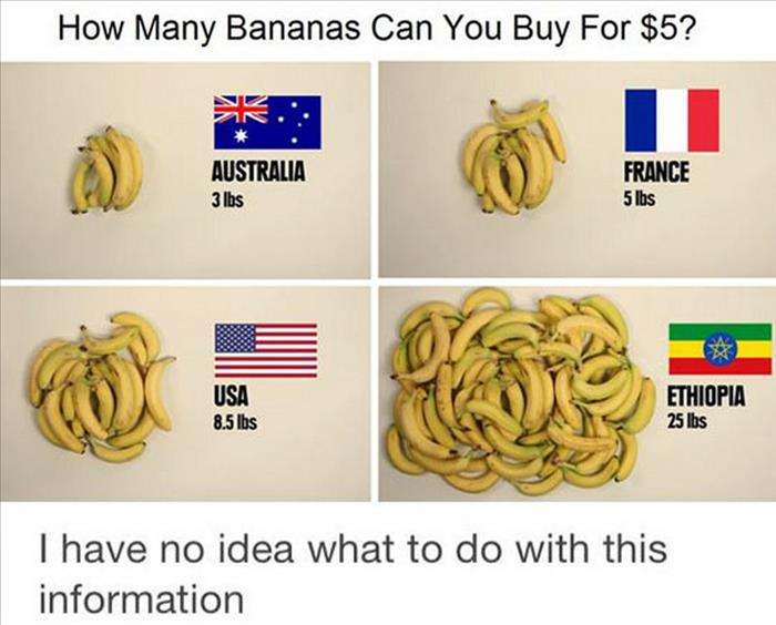 that's a lot of bananas