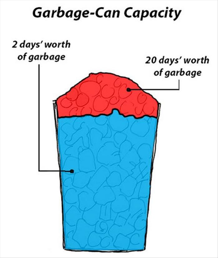 the garbage can