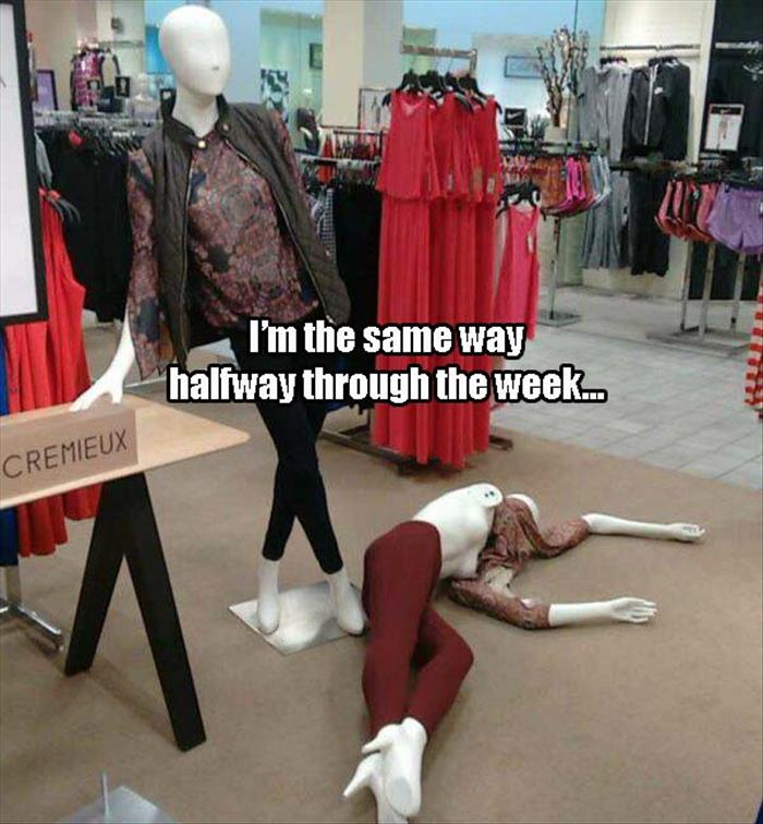 Funny Pictures Of The ...