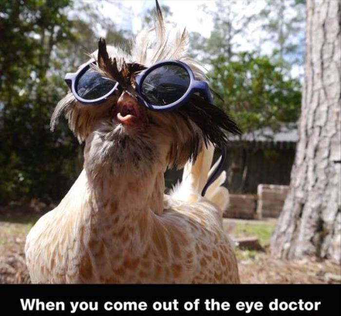come out of the eye doctor