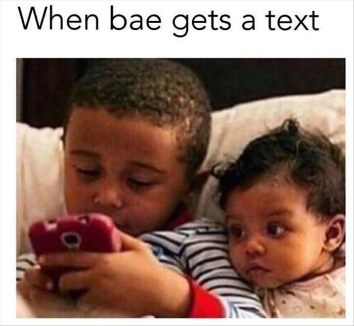 Funny Memes For Bae : Funny pictures of the day pics