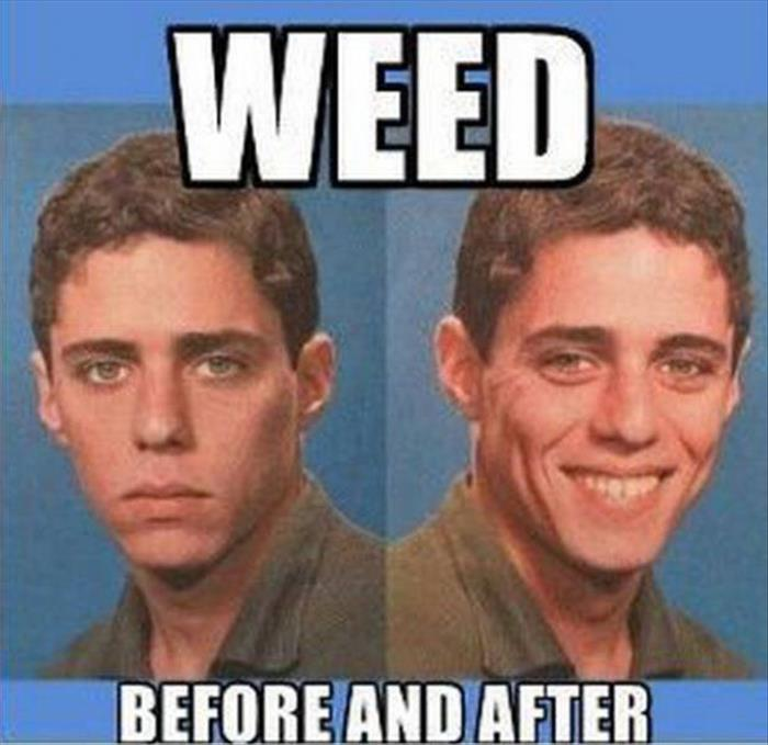 Funny Weed Memes  Get your weed on
