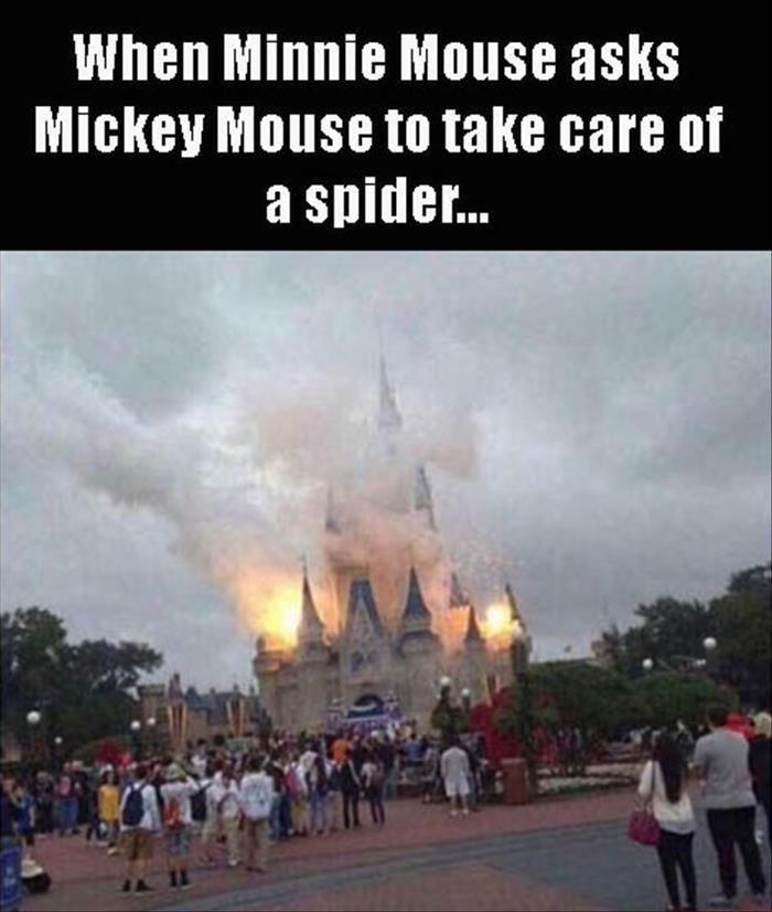 a what did you do mickey mouse copy