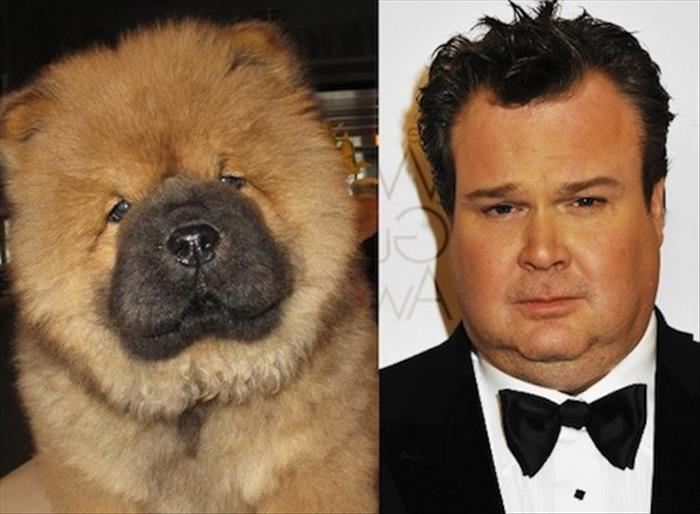 Famous People and Their Animal Doppelganger - 20 Pics