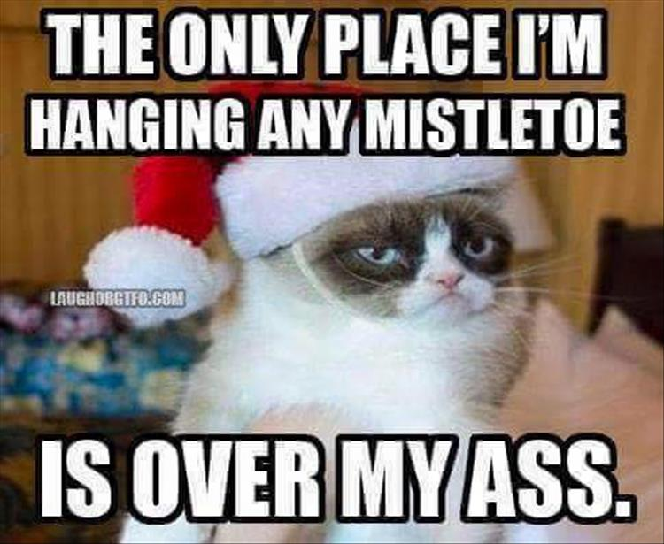 funny christmas pictures (1)