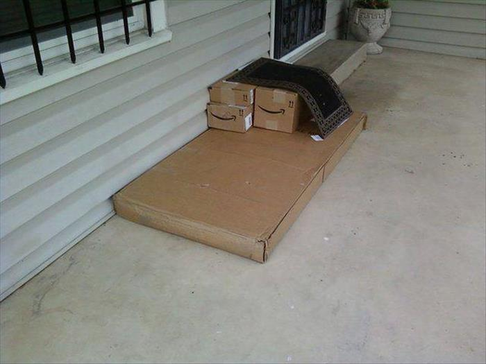 funny delivery (7)