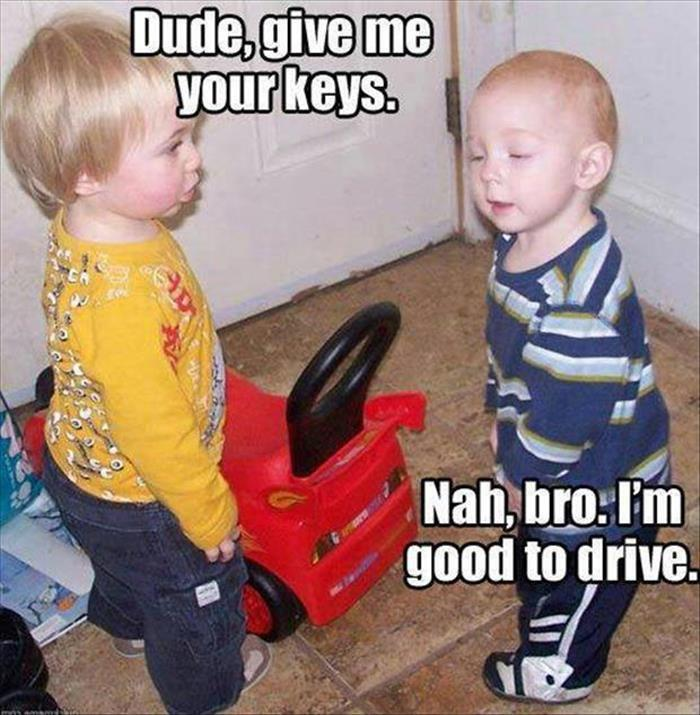 funny pictures (20)