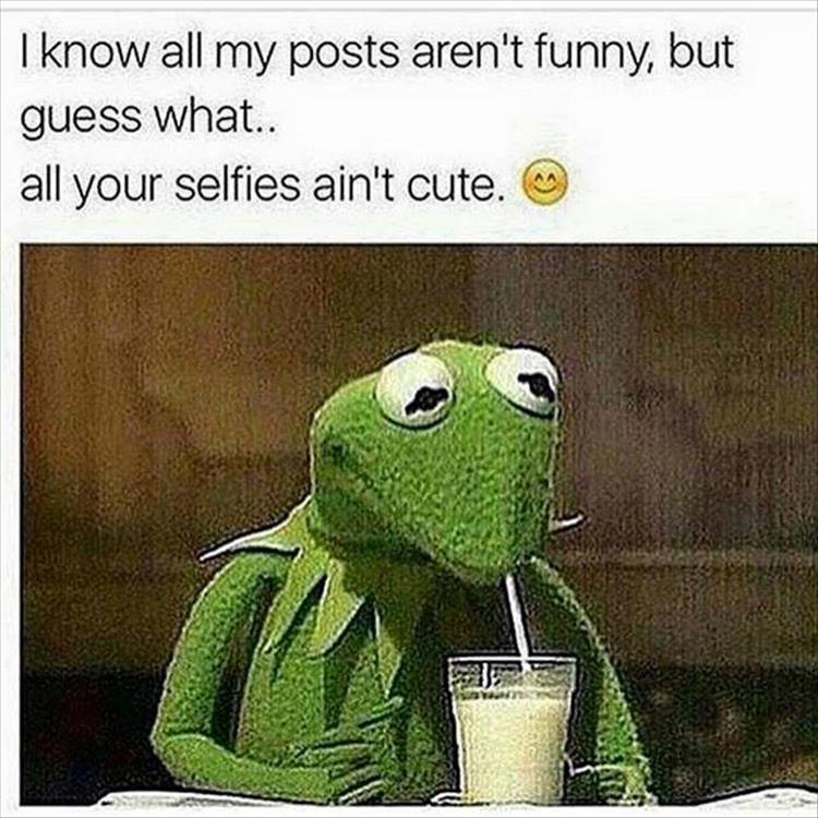 158 Best Images About Kermit Miss Piggy On Pinterest: Funny Pictures Of The Day