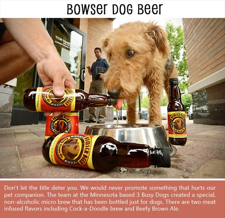 BOWSER DOG BEER