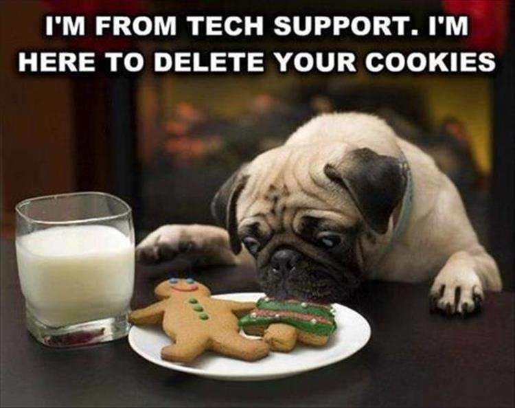 Your Sunday LOLcats (dial-up Warning) One More BYO Edition