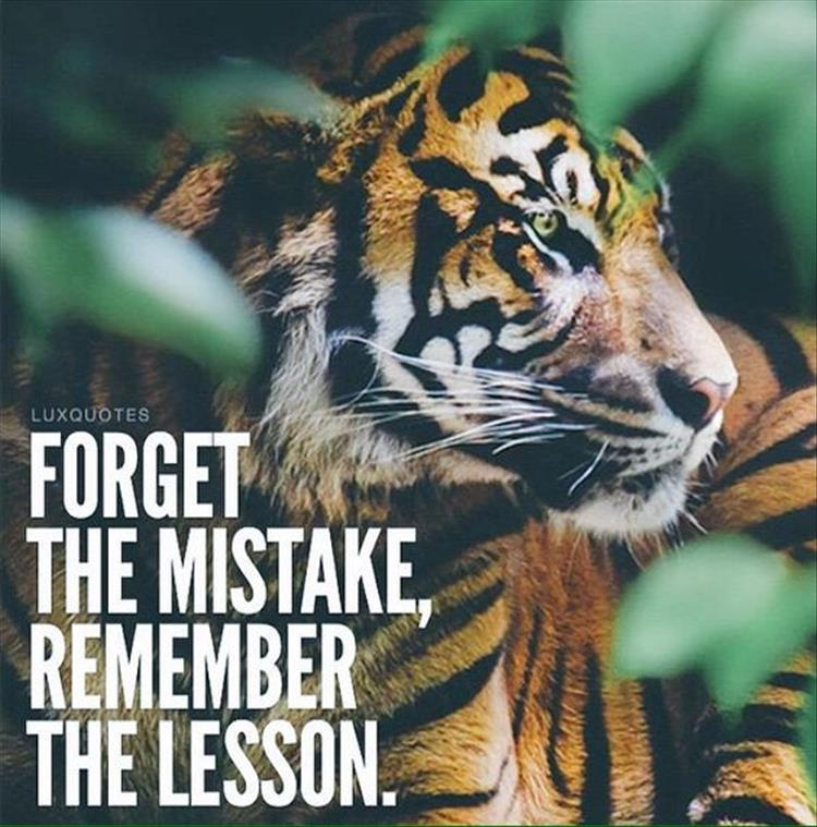 a forget mistakes and remember the lessons