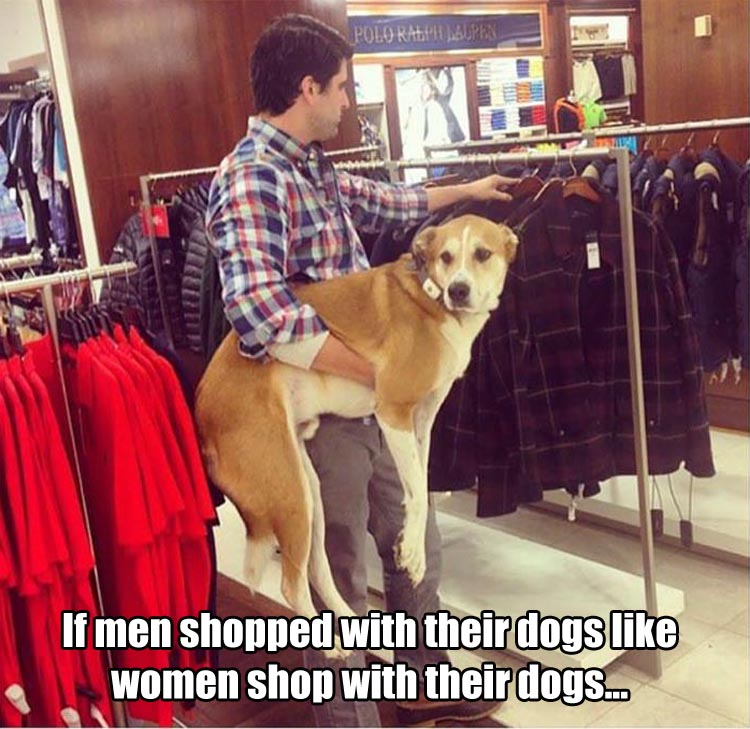 a shopping with dogs