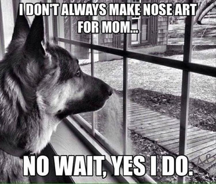 dog nose art
