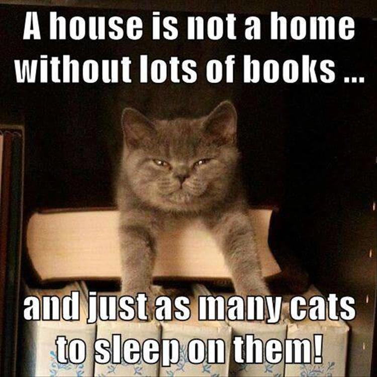 home cats