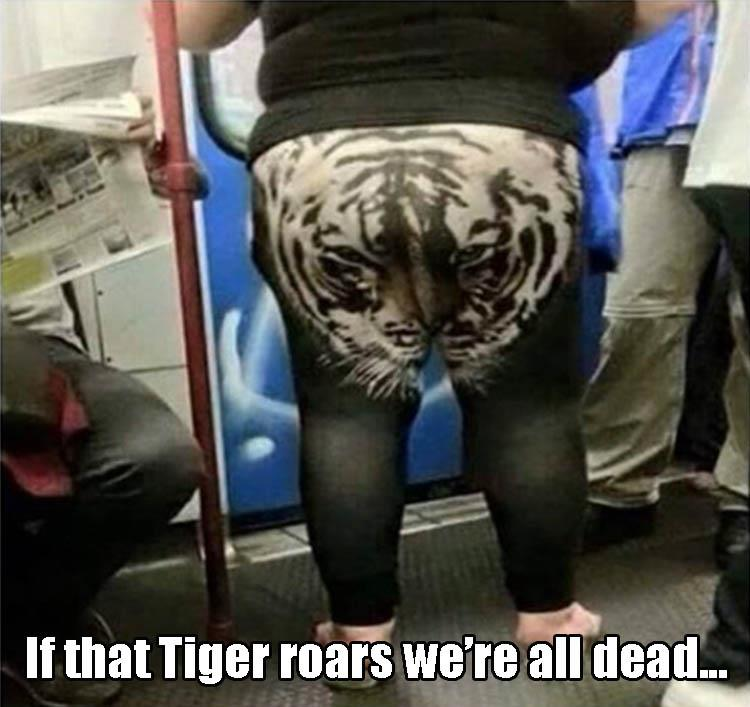 if that tiger roars