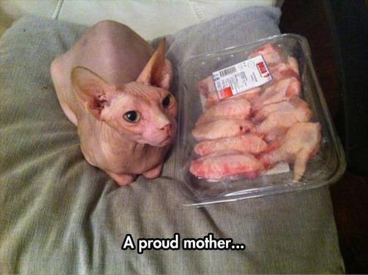 proud mother