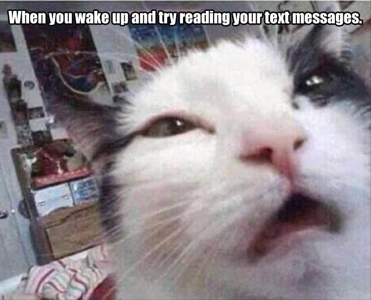 reading a text