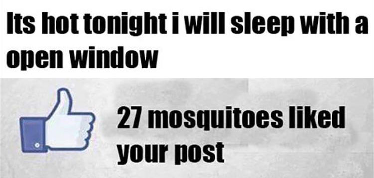 Funny pictures of the day 34 pics for Sleeping with window open in winter