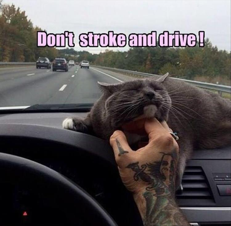 stroke and driving