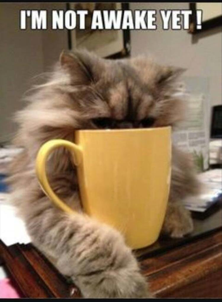 waking up with coffee