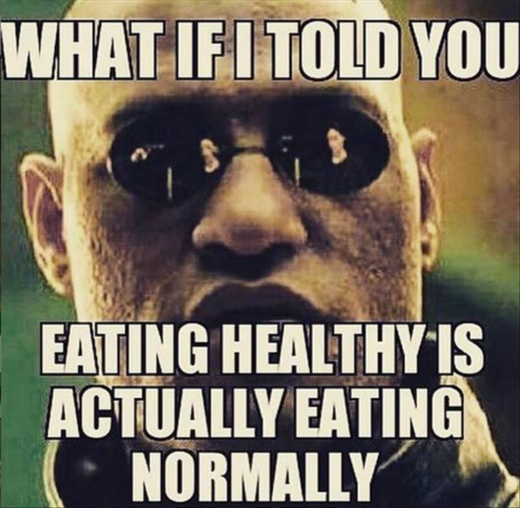 Funny Meme Eating : Funny pictures of the day pics