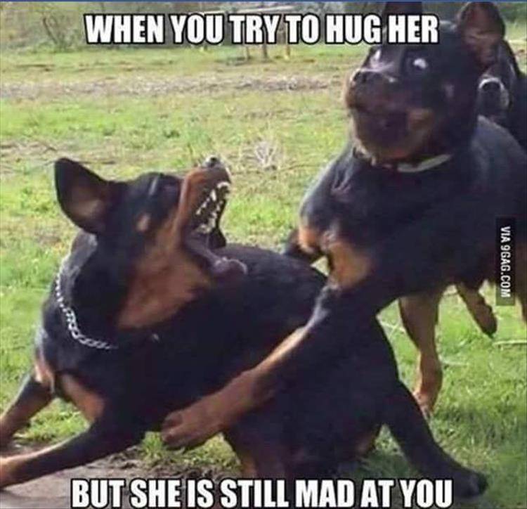 when you try to hug your wife