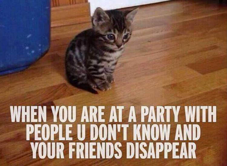 when you're at a party