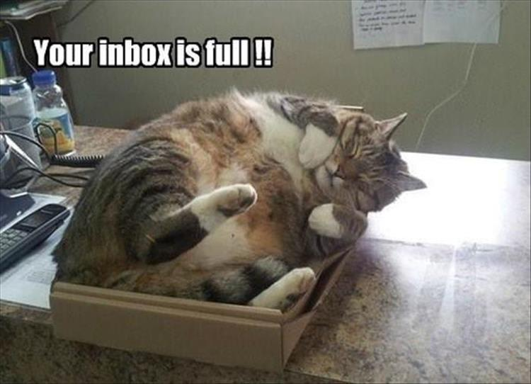 your in box is full
