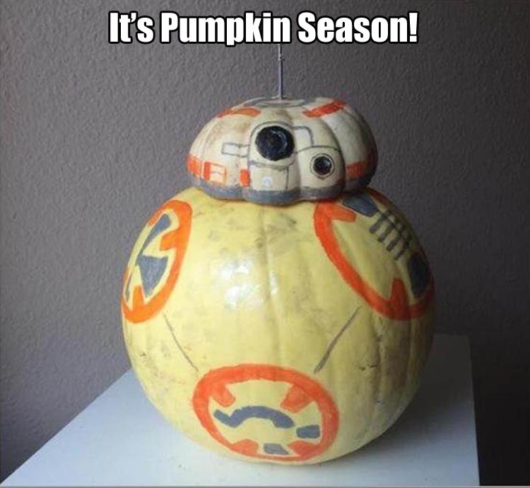pumpkin-funny-pictures