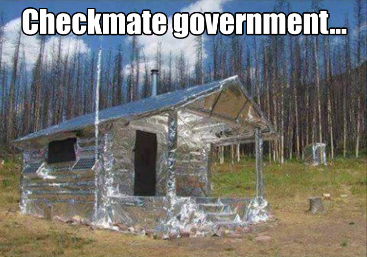 checkmate-government