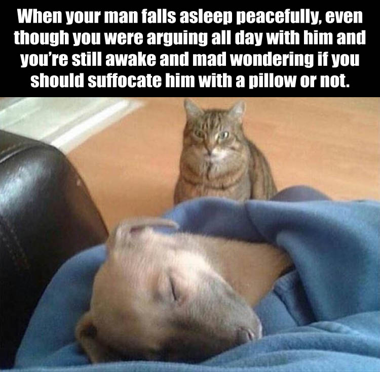 falling-alseep-funny-pictures