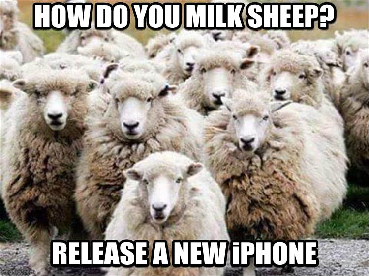 iphone-funny-pictures