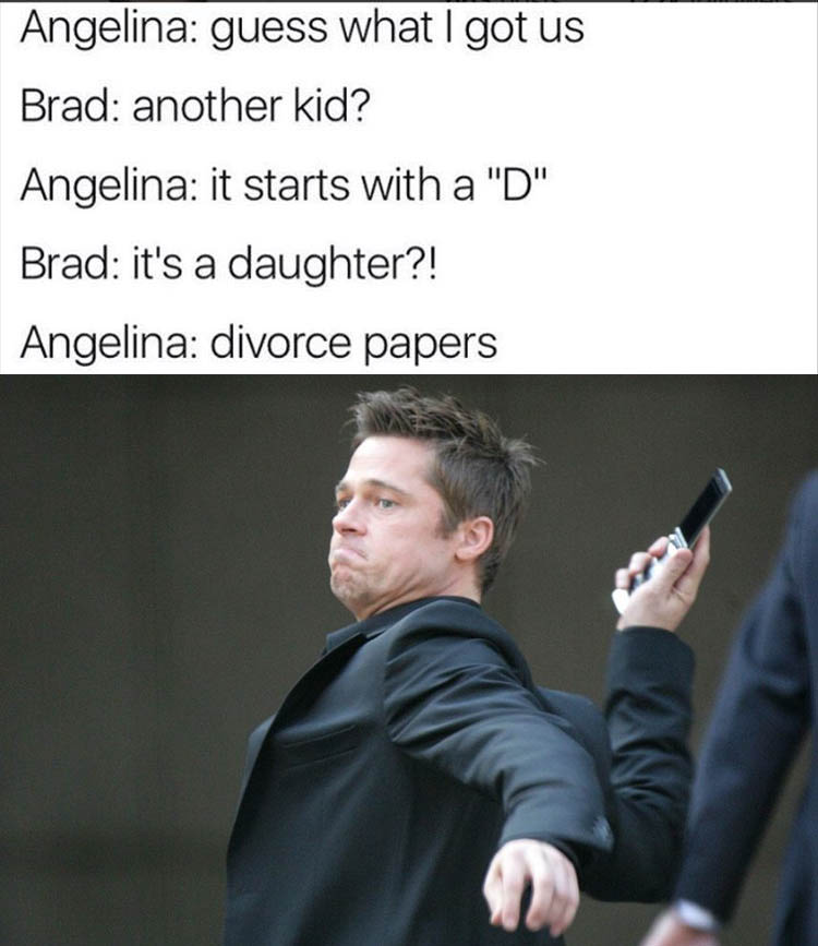 the-brad-pitt-divorce-funny-pictures