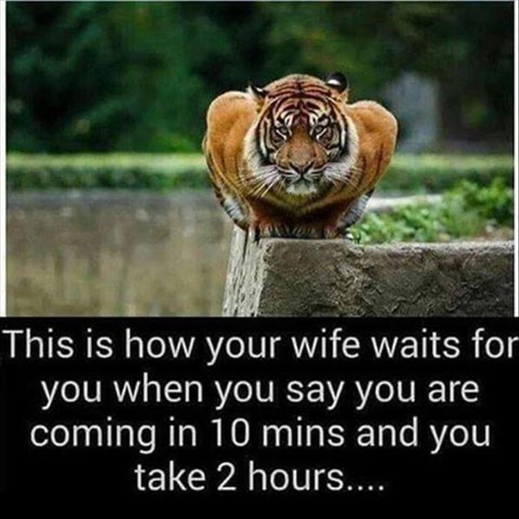 wife-is-waiting-for-you