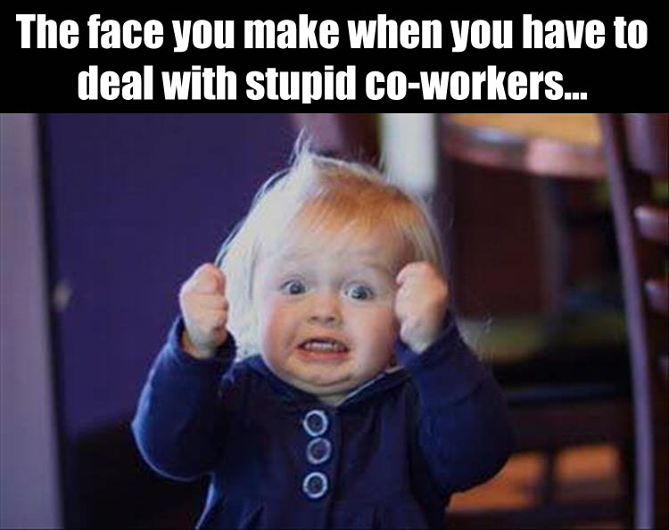 Funny Coworker Meme : Funny pictures of the day pics