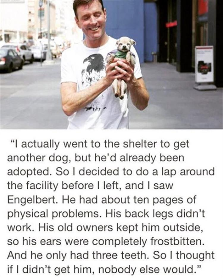 faith-in-humanity-restored-10