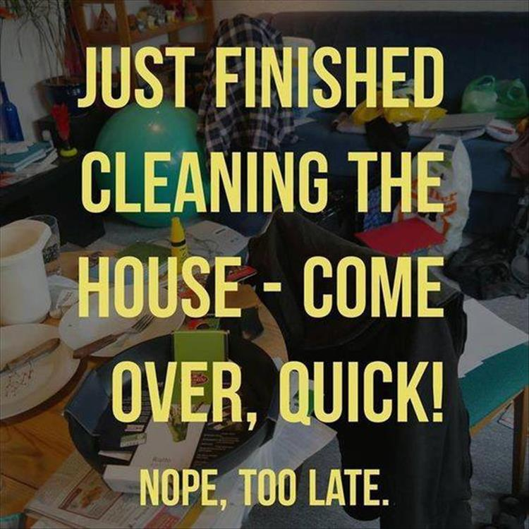 just-finished-cleaning-the-house