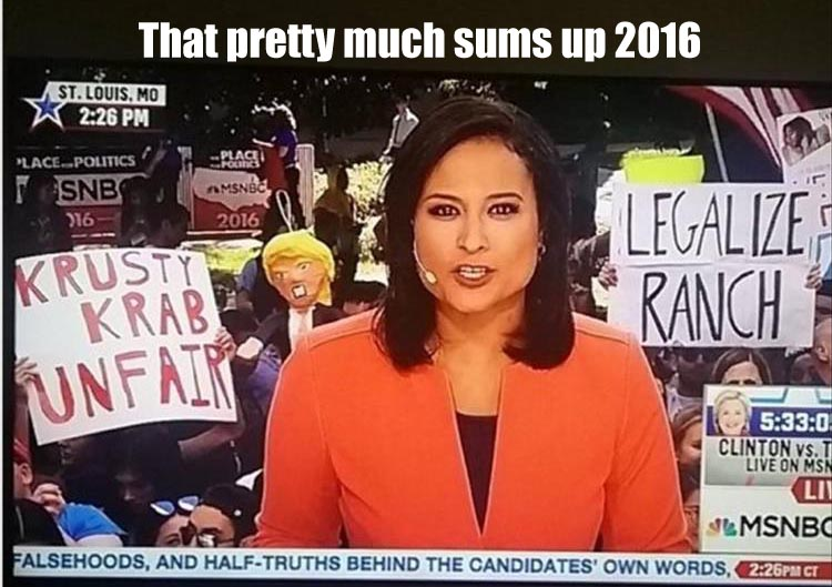 that-pretty-much-sums-up-2016