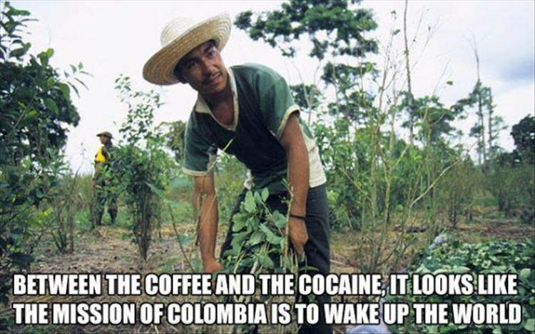 the-coffee-and-cocaine