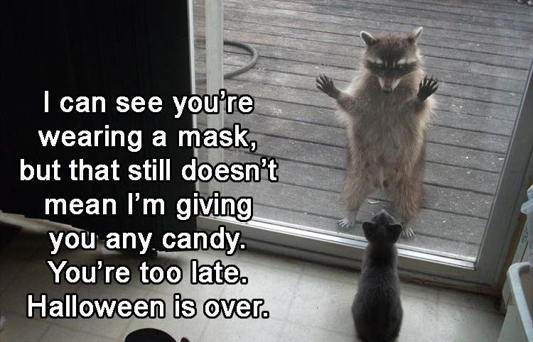 3-just-cause-your-wearing-a-mask-doesnt-mean-im-going-to-give-you-candy