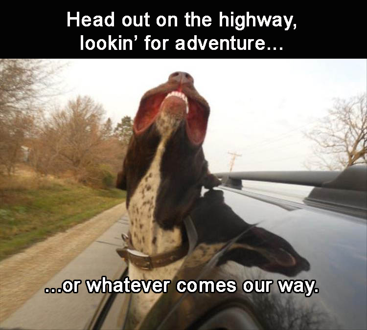 my-heads-out-on-the-highway-im-looking-for-adventure-or-whatever-comes-my-way