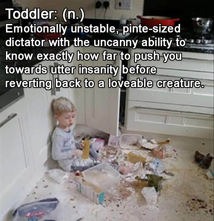 a-toddler-funny-definitions